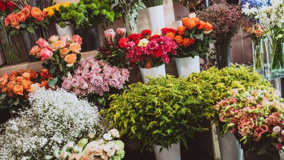 Livraison de fleurs pas cher : comment s'y prendre, conseils