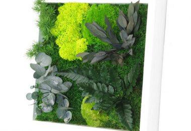 Tableau végétal stabilisé : osez une touche naturelle chez vous