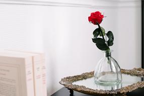 La rose éternelle, une ode à l'amour !